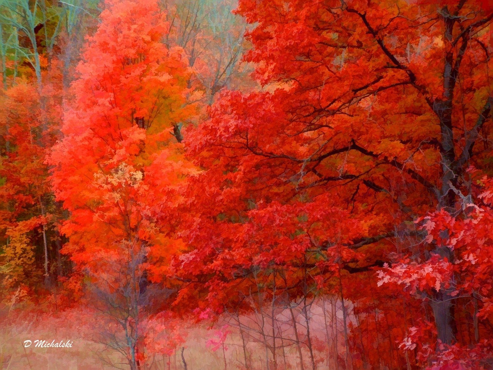 http://4.bp.blogspot.com/_zA20Z2zzbEM/S9UmoloK--I/AAAAAAAAADg/vUzElMd7acc/s1600/Fall_in_Northern_Michigan_nature_art_computerdestkop_wallpaper_1600.jpg