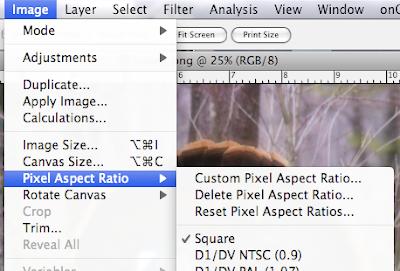 Forensic Multimedia Analysis Pixel Aspect Ratio Correction In Cs4