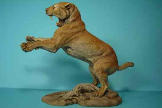 How Fast Do Cheetahs Run 10 Giant Prehistoric C...