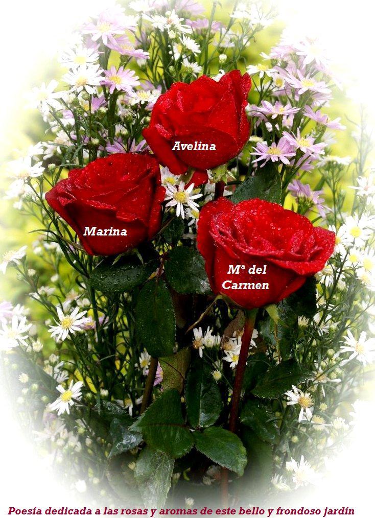 Image gallery jardin de rosas letra - Jardines con rosas ...
