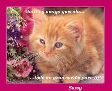 Sussy; Un cariño de una amiga Chilena 21/02/09
