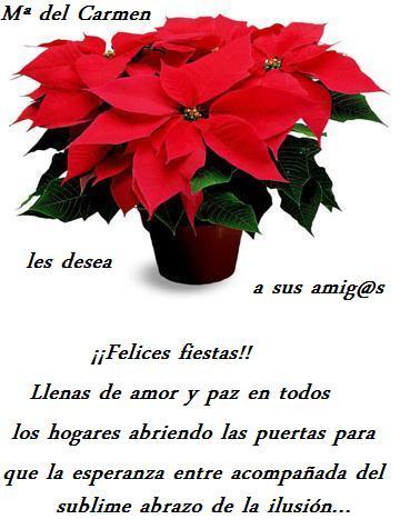 Regalo_de_Navidad_para_mis_amig@s_14-12-10