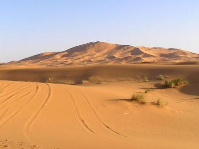zonas de batalla Desierto
