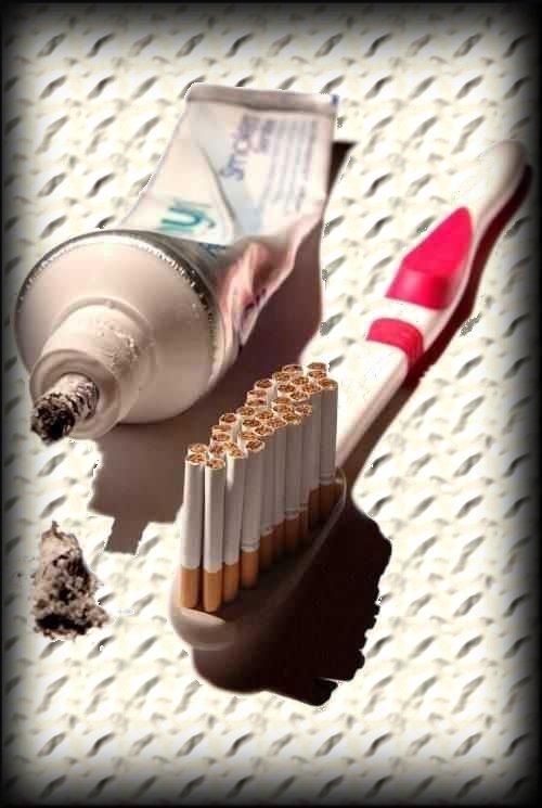 componentes del cigarrillo. Sus componentes tóxicos e