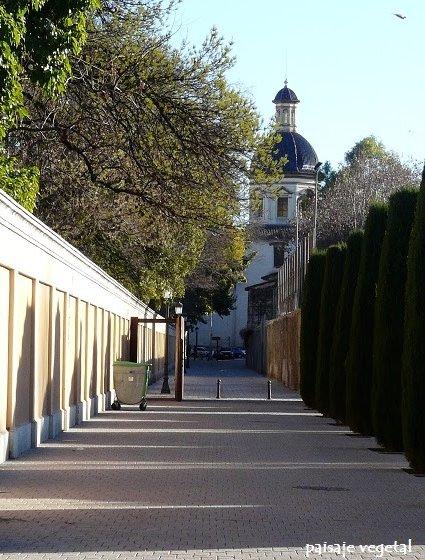 Paisaje vegetal jard n de las hesp rides valencia for Jardin de las hesperides valencia