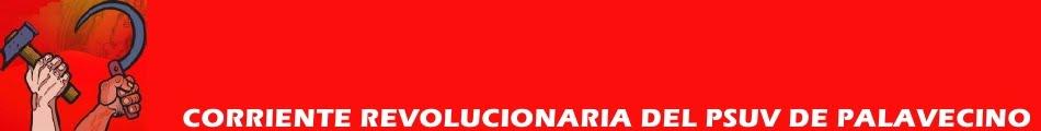 Corriente Revolucionaria del PSUV de Palavecino