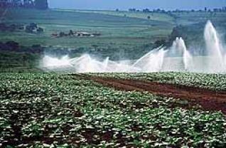 [Irrigação+na+Paraíba]