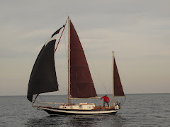 nantucket clipper 31'