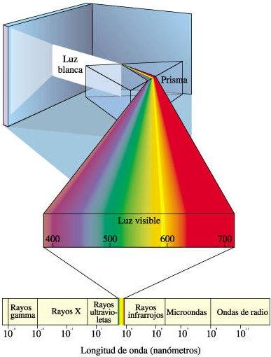 la naturaleza sobre la luz: