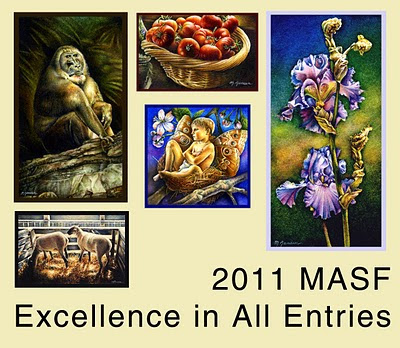 2011 MASF Excellence in All Entries Award