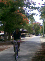On the trusty bike