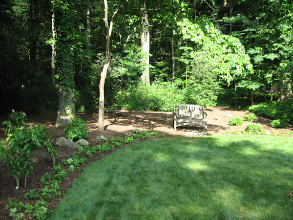 A GUIDE TO NORTHEASTERN GARDENING Shade Gardening