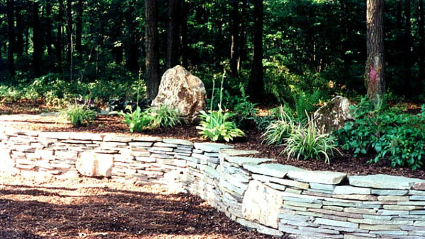 A guide to northeastern gardening company profile for Woodland landscape design