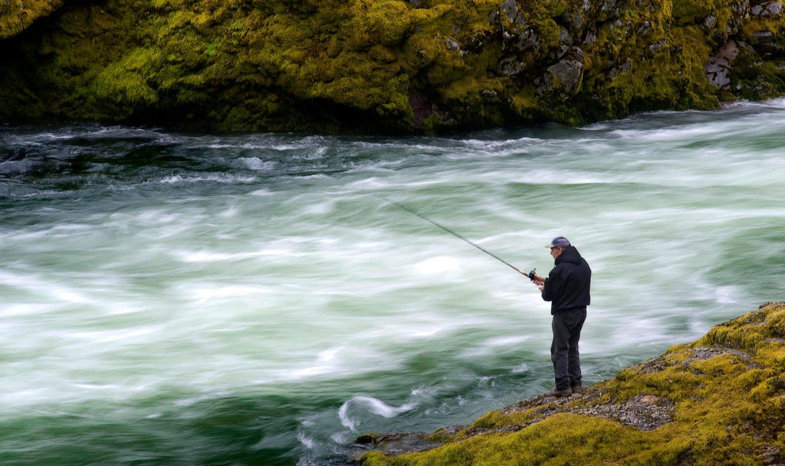 Robin loznak photography north umpqua chinook fishing for Oregon salmon fishing