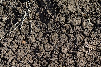 Mrnagribianko ecozones 1 montane cordillera for Minerals found in soil