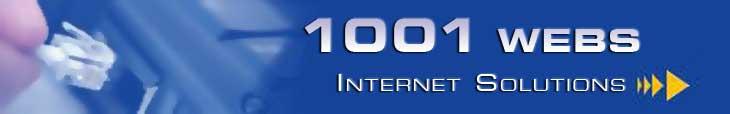 1001 Webs