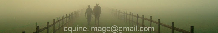 Equine Image