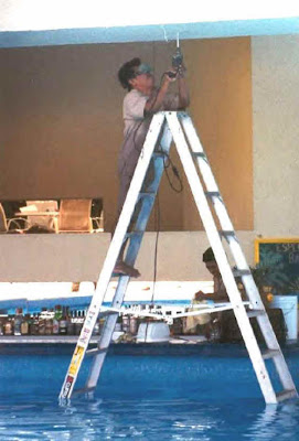 Ladder Funny
