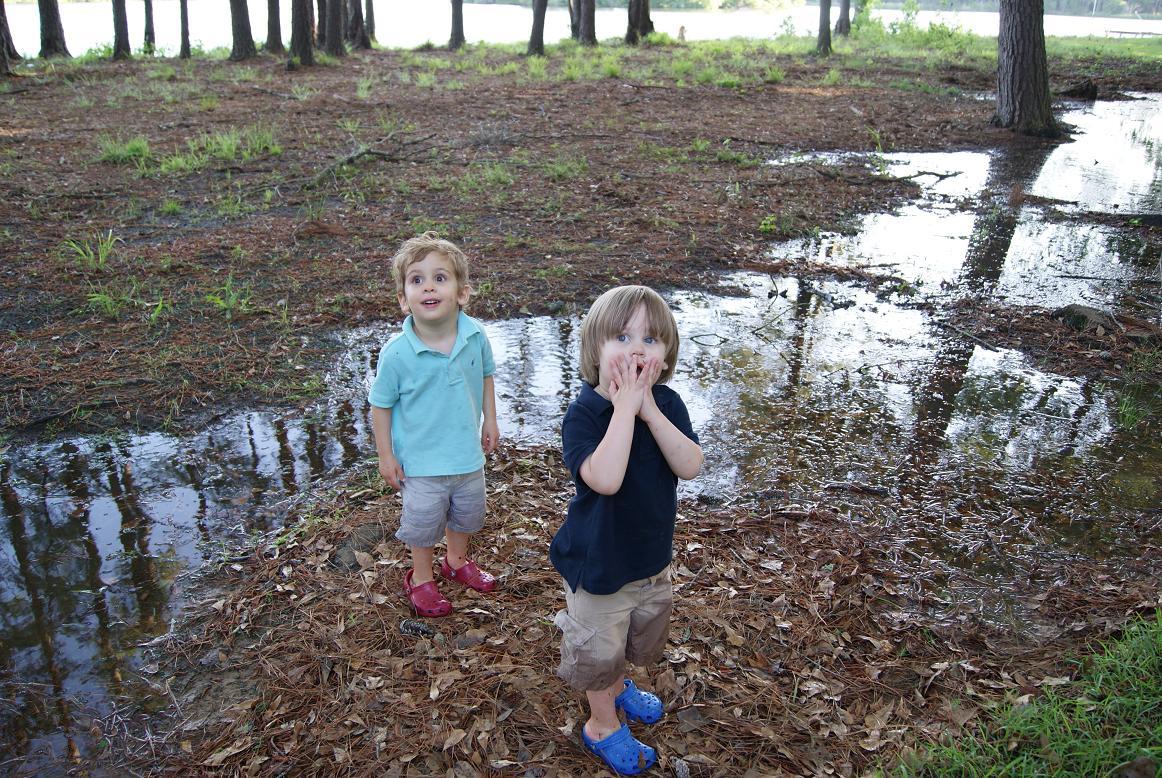 greene beans backyard puddle adventures