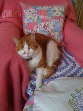Life can be soooo tiring