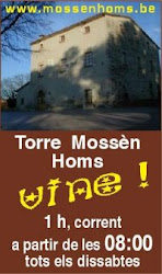 Entrenaments TorreMossèn Homs
