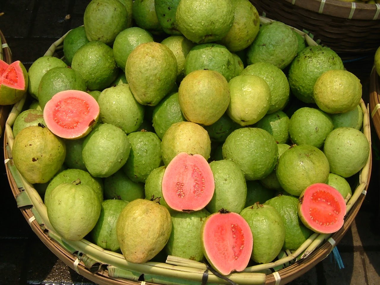Can guava cure diabetes wound