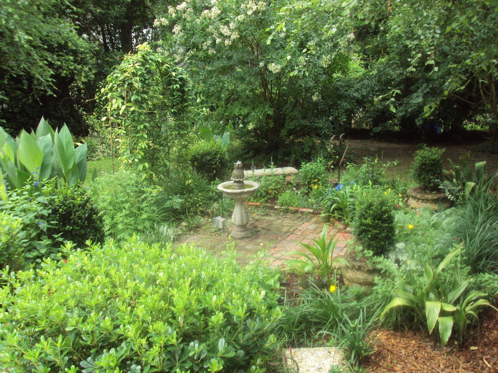 antique art garden: i got my garden feelings hurt.