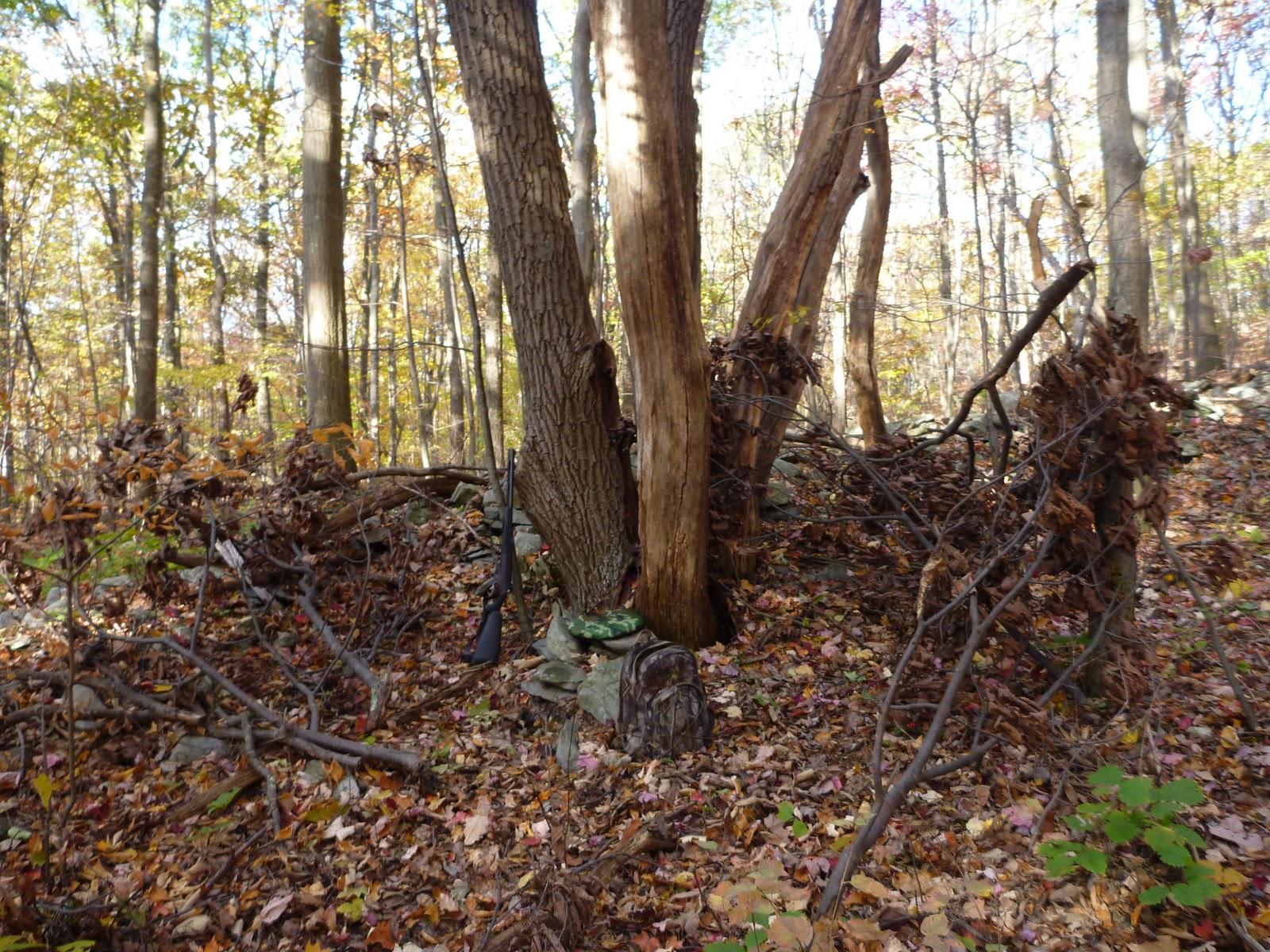 Natural hunting blinds rachael edwards for Deer blind images