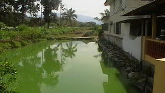 Uluyam farm