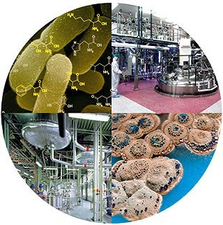 [bioteknolgi+enzim.htm]