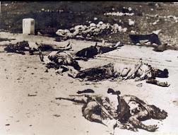 صور من مذبحة دير ياسين