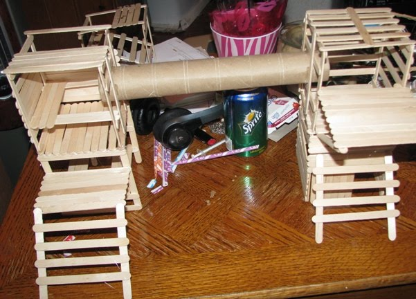 Tiny furballs diy toys for rodents for How to build a hamster cage