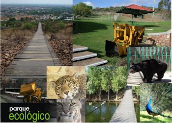 Parque ecologico Los jales Fresnillo Zacatecas