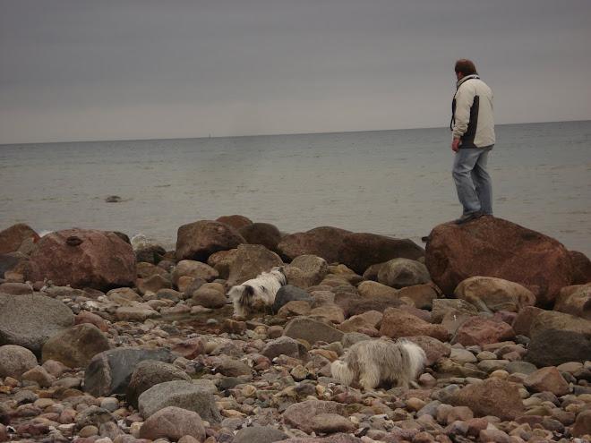 Kleines Pontreffen an der Ostsee
