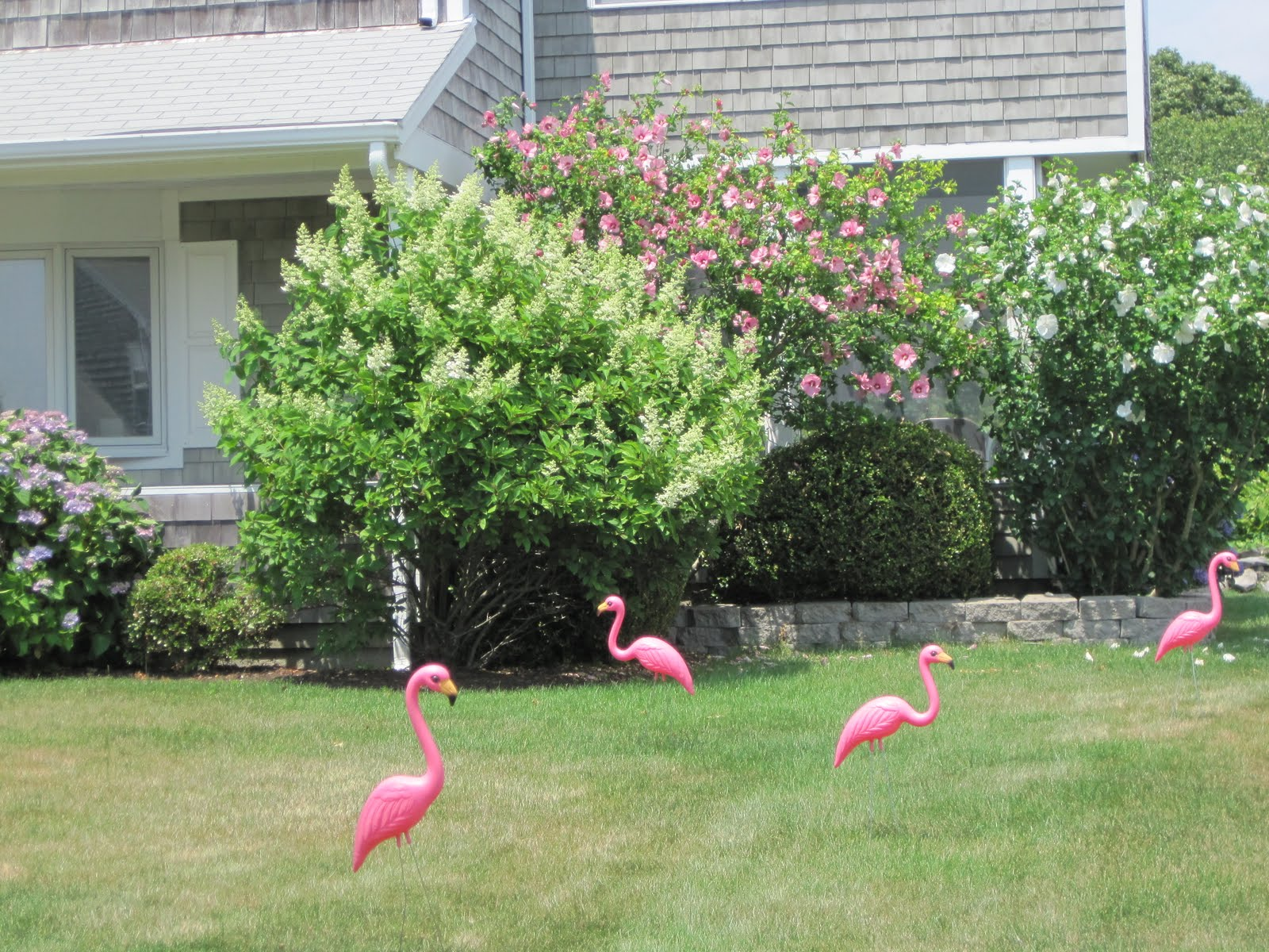 Gardening and Gardens: Pink Flamingo Lawn Ornaments