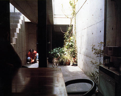 Courtyard House Designs Azuma House By Tadao Ando
