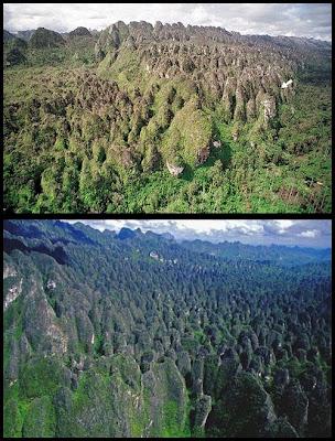 Mar rocas impenetrable Indonesia