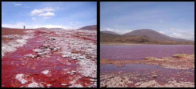 Laguna Roja en Chile