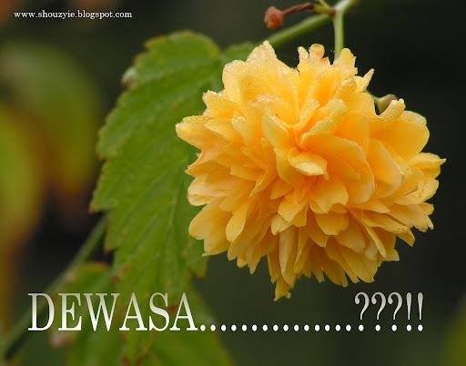 http://4.bp.blogspot.com/_zbvW_4R3KEI/Szw8dzHW_cI/AAAAAAAAAT0/APg5qRChRNw/dewasa.jpg