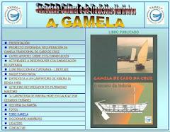 A WEB DA GAMELA