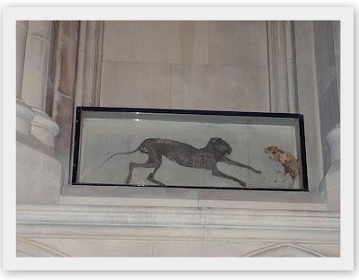 gato y raton momificados