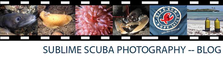 Sublime Scuba Photography