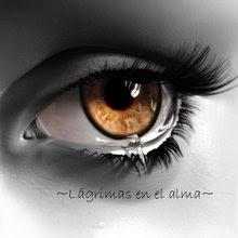 Este Blog está dedicado a la memoria de Olga Palacios