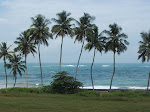 Takoradi Golf Course Photo Album