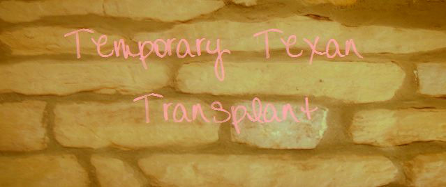 Temporary Texan Transplant