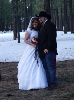 Our Wedding Was In Pinetop Az March 6, 2010