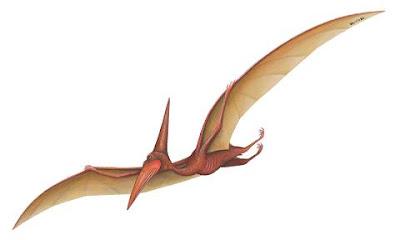 [Image: pterodactyl.jpg]