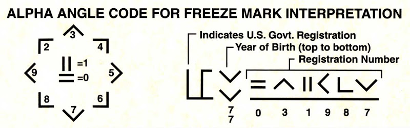 The 7msn Ranch The Mysterious Case Of The Missing Freeze Brands