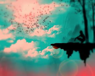 Volar: El instante en que se descubre la libertad...