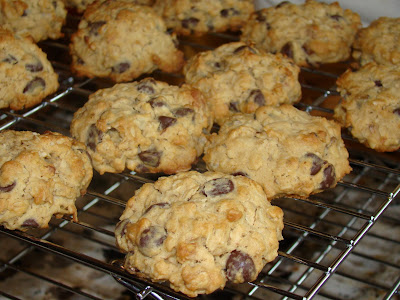 Judy's Kitchen: PRIZE-WINNING OATMEAL-CHOCOLATE CHIP COOKIES